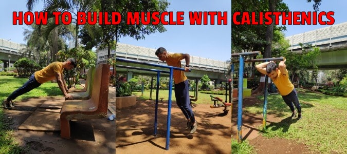 How to build muscle with calisthenics featured image